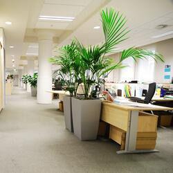 Upratovanie RoomService administratívne priestory