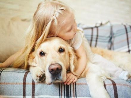 Vyhrajte boj s chlpmi domácich miláčikov